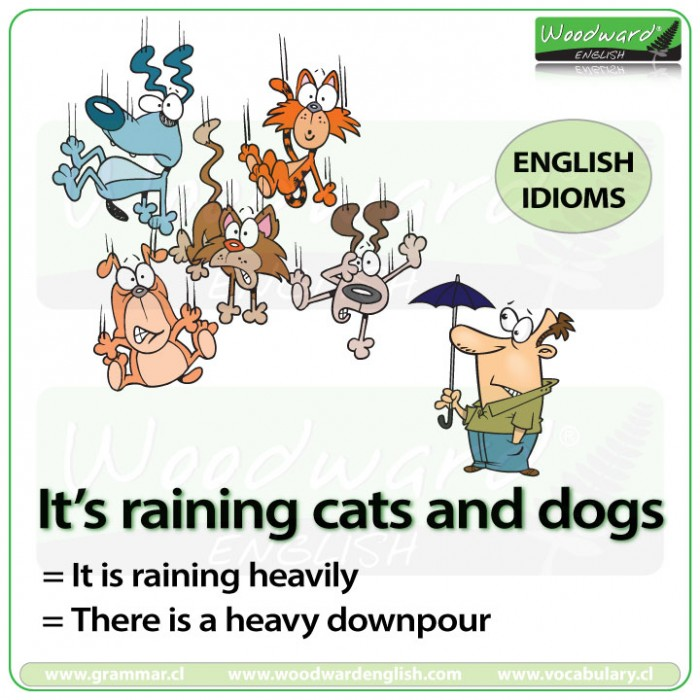 It's raining cats and dogs - English idiom meaning