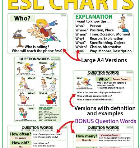 Question Words in English Charts & Flash Cards - ESL / ELL Teacher Resources