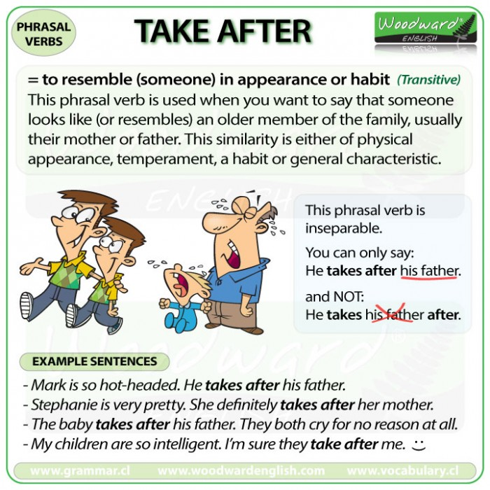 TAKE AFTER - Meanings and examples of this English Phrasal Verb