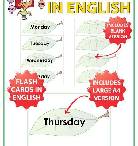 Days of the Week - English Flash Cards with a leaf design. ESL/ELL Teacher Resource.