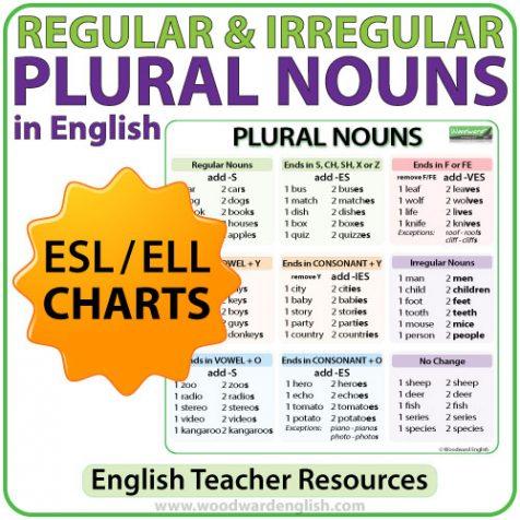 English Regular & Irregular Plural Nouns in English - Charts