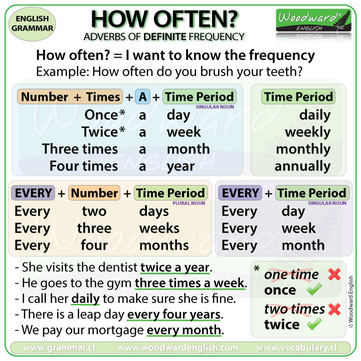 How often? Adverbs of Definite Frequency