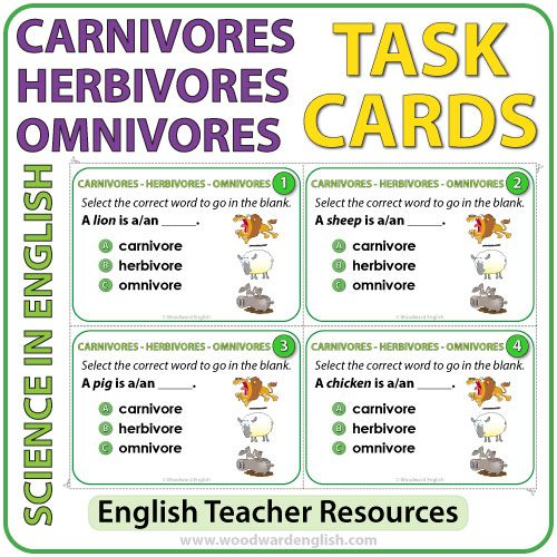 32 Science task cards - The difference between Carnivores, Herbivores, and Omnivores in ENGLISH
