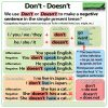 DON'T vs. DOESN'T in English - Simple Present Tense Negative Sentences