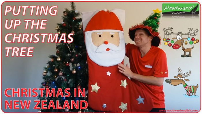 Putting up the Christmas Tree - Xmas in New Zealand