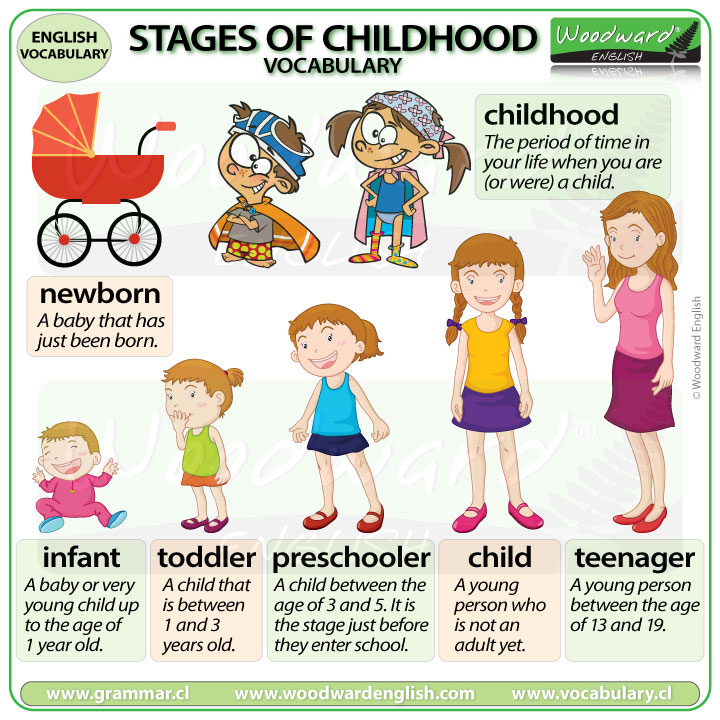 Stages of Childhood - English Vocabulary