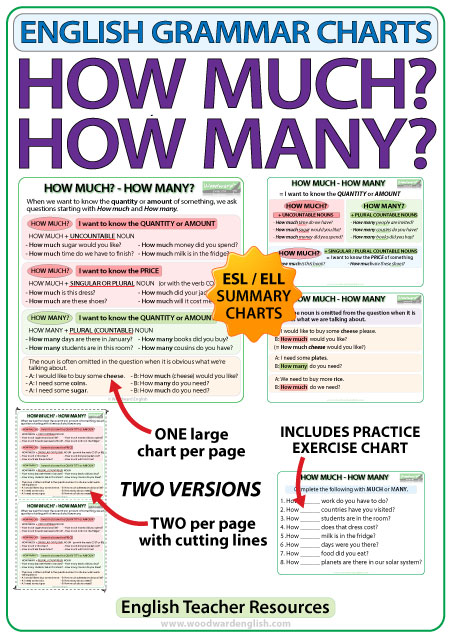 English Grammar Charts - How much? How many?