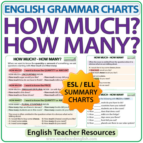 How Much Many English Grammar Charts