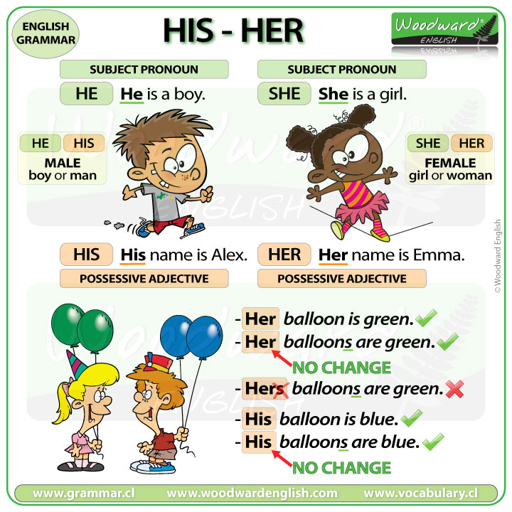 HIS HER difference - Possessive Adjectives in English