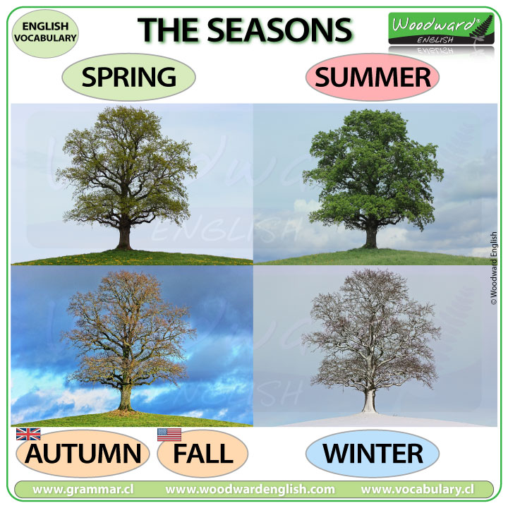 Seasons in English - winter, spring, summer, autumn - fall