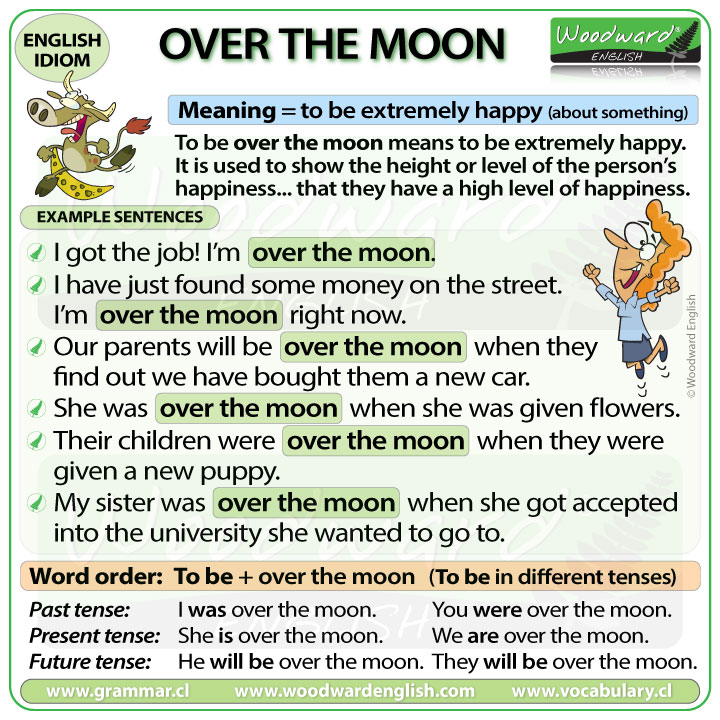 Over the moon - English Idiom meaning with example sentences