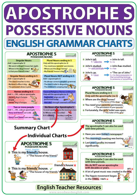 Apostrophe S English grammar rules charts - Teacher Resource
