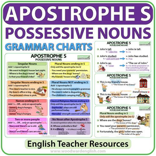 Apostrophe S possessive nouns English grammar charts - Teacher Resource