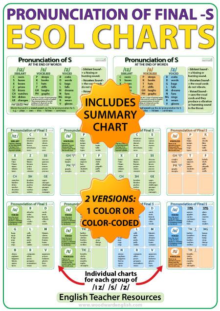 Final S English Pronunciation - ESOL Charts