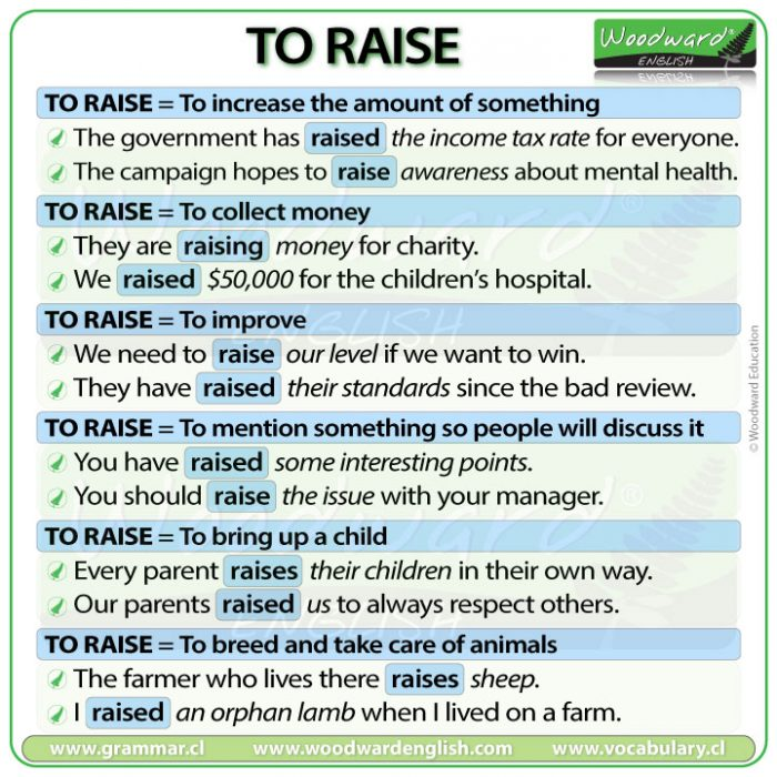 Raise - meanings and example sentences in English
