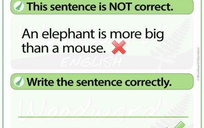 English Error Analysis 3